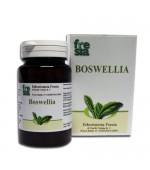BOSWELLIA – antinfiammatorio, analgesico, antibatterico e sedativo: riduce dolore e gonfiore – 60 capsule