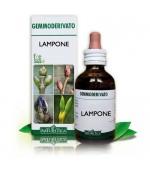 GEMMODERIVATO DI LAMPONE - Ha proprietà antinfiammatorie. Dona un senso di sazietà e dona energia - 50 ml
