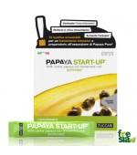 PAPAYA START-UP – Incredibile potere antiossidante. Sostiene le difese immunitarie e migliora la digestione – 10 bustine