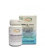 PERILLA FRUTESCENS - Contrasta allergia e asma. Rallenta l'invecchiamento e previene i disturbi cardiovascolari - 60 capsule