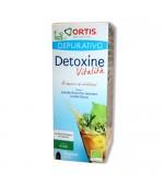 DETOXINE VITALITA' DEPURATIVO gusto the verde – Indicato per depurare, eliminare i depositi adiposi - 250 ml