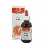 GEMMODERIVATO DI GELSO NERO – Utile in caso di diabete e pressione alta. Efficace ipoglicemizzante – 50 ml