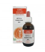 GEMMODERIVATO DI BETULA VERRUCOSA – Depura l'organismo. Contrasta la cellulite e il gonfiore agli arti inferiori - 50 ml