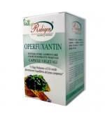OPERFUXANTIN - Molecola naturale che riduce il grasso bianco in eccesso favorendo il dimagrimento - 60 opercoli