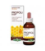 PROPOLI EVSP ESTRATTO IDRO NO ALCOL - Utile in caso di raffreddore, asma, influenza e mal di gola - 30 ml