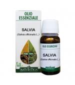 OLIO ESSENZIALE DI SALVIA – Espettorante, digestivo, antispasmodico, deodorante e aromatizzante -  10 ml