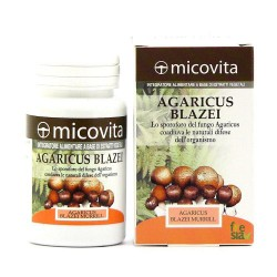 AGARICUS BLAZEI - fungo adatto in caso di allergie e infiammazioni. Regola il colesterolo e migliora la circolazione. - 60 capsule