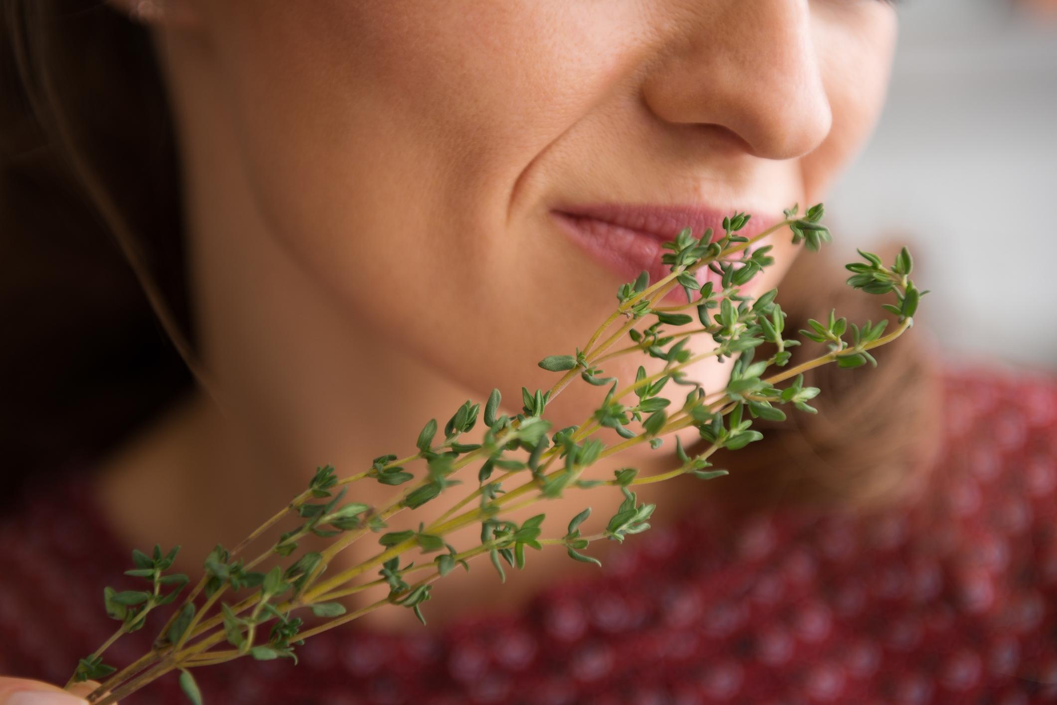 Sapevi che il timo libera il naso chiuso e allontana raffreddore e mal di gola in meno di 1 minuto?